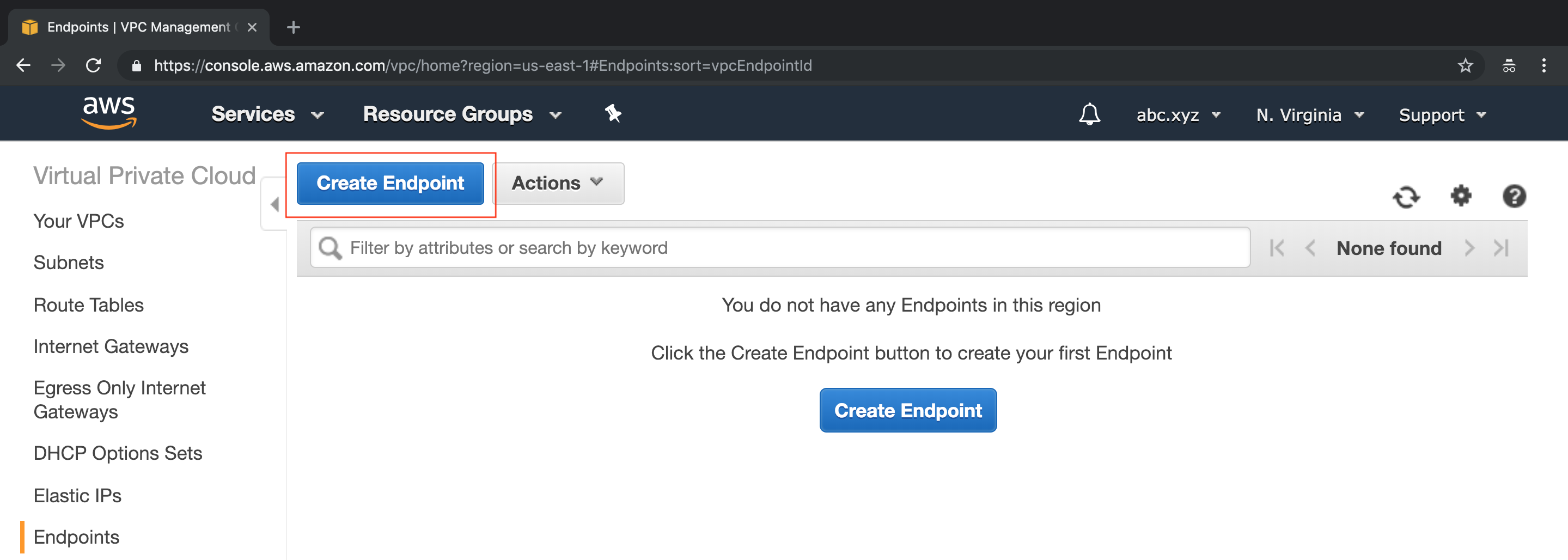 A screen capture showing the Create Endpoint window on the AWS Console